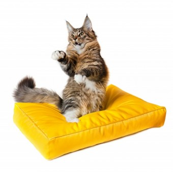 Лежанка прямоугольная для кошек и собак